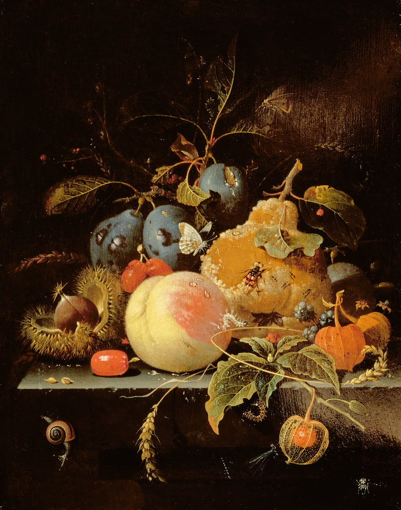 Still Life of Fruit and Nuts on a Stone Ledge  by Abraham Mignon