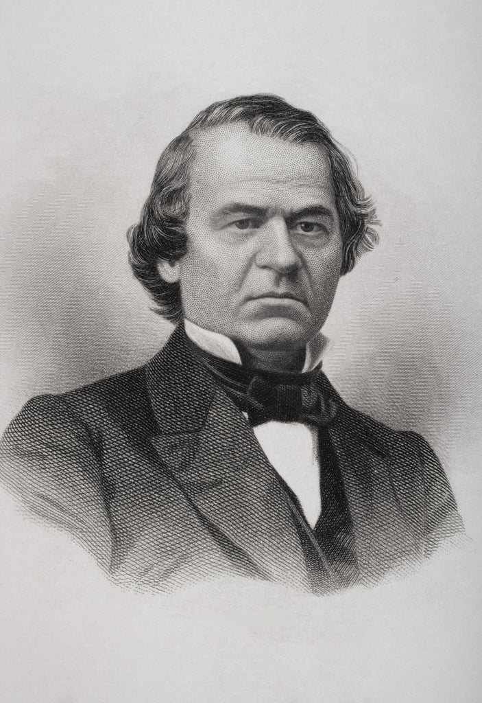 Portrait of Andrew Johnson (1808-75)  by American School