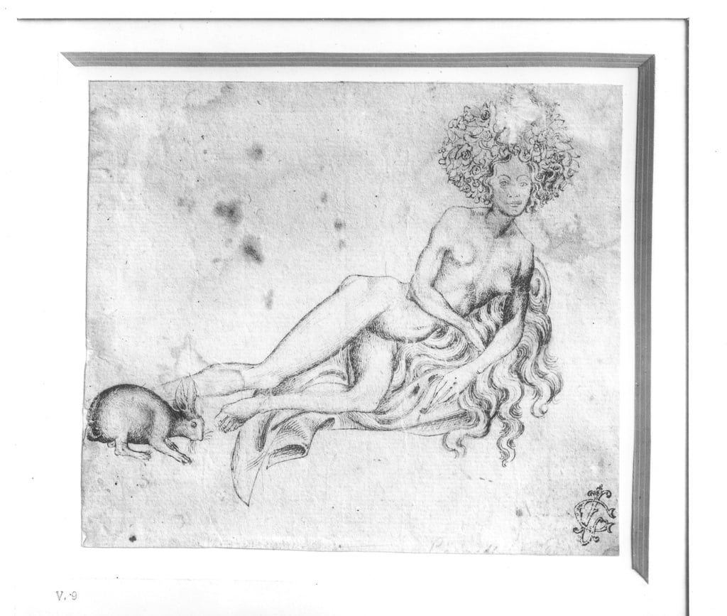 Allegory of the Lust   by Antonio Pisanello