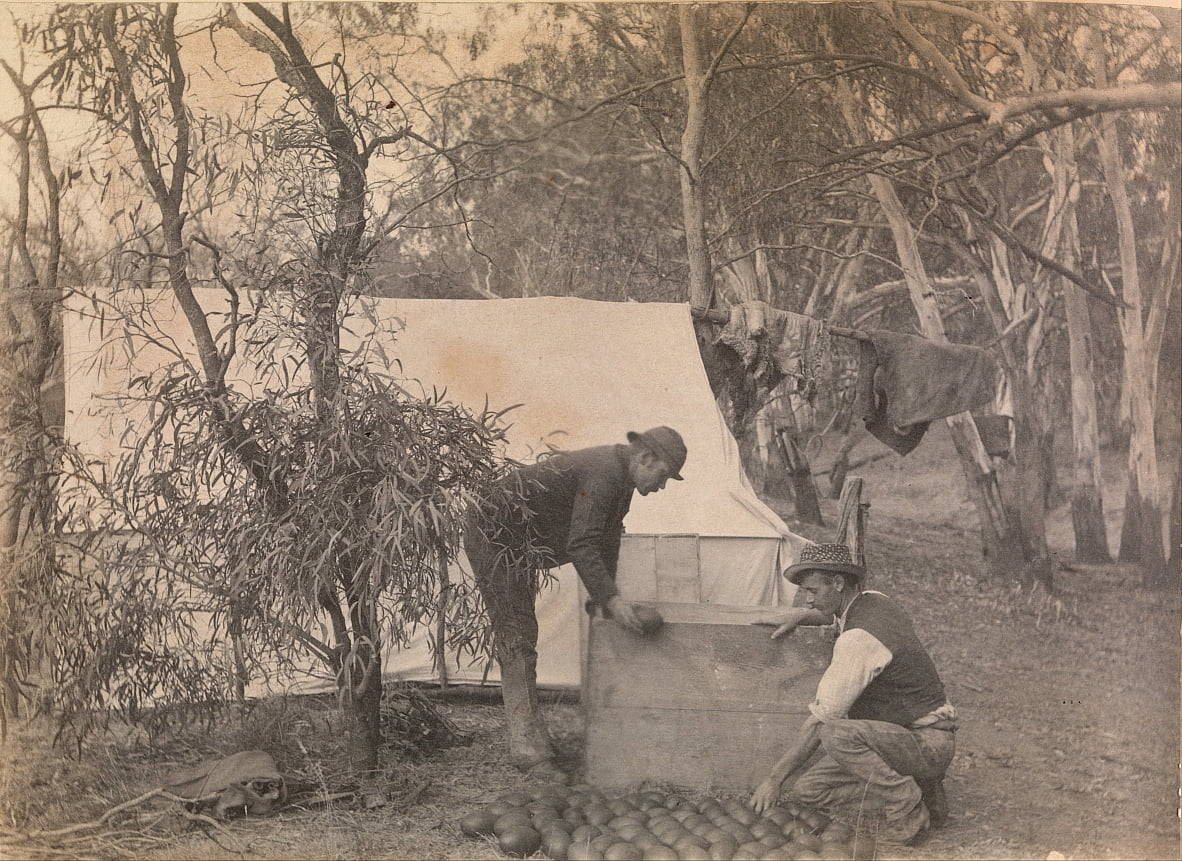 An Emu Eggers Camp by Archibald James Campbell