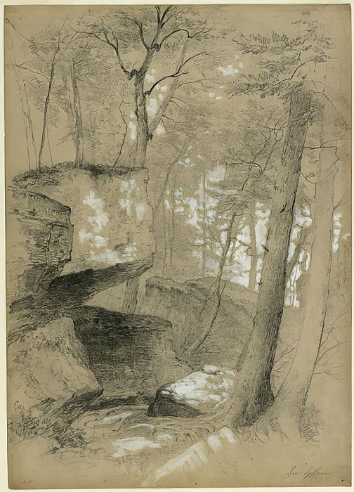 Study Rocks and Trees in Ice Glen, Stockbridge, Massachusetts, 1851 (graphite and white gouache on beige paper) by Asher Brown Durand