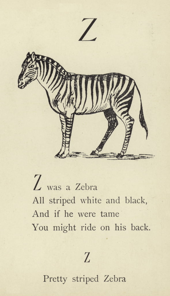 The letter Z  by Edward Lear