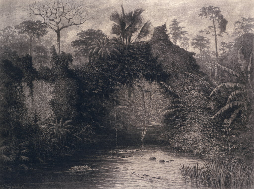 View of the Gulf of Biafra, West Africa, 1877 (charcoal on paper) by Emma Sandys