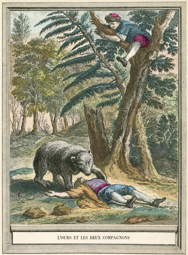 The bear and the two companions by French School