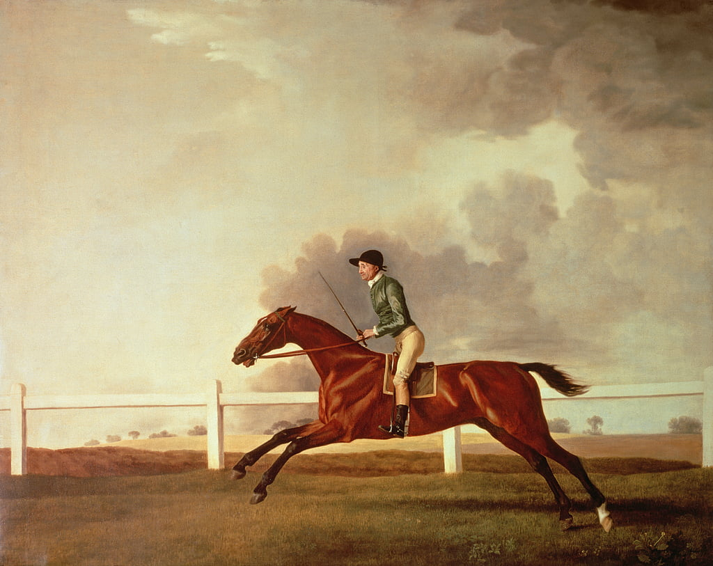 Bay Malton with John Singleton Up, c.1767  by George Stubbs