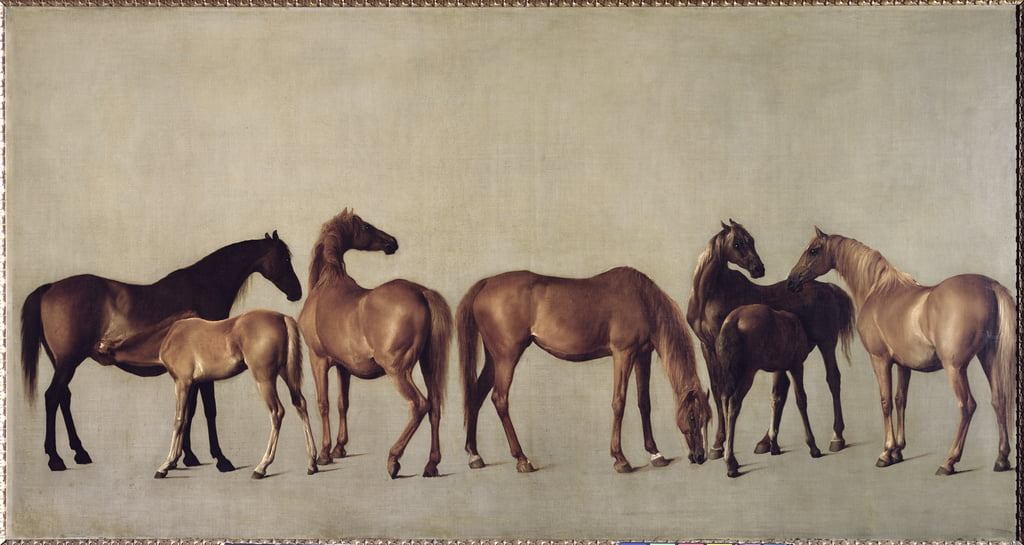 Mares and Foals without a Background, c.1762 by George Stubbs