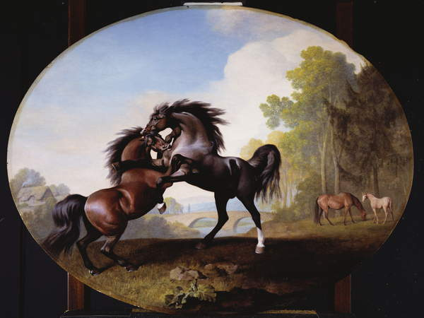 Stallions Fighting, 1781 by George Stubbs