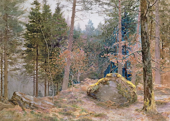 In a Welsh wood, winter by James Thomas Watts