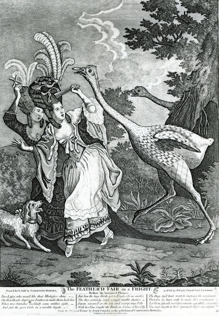 The Feathered Friend in a Fright, 1779  by John Collet