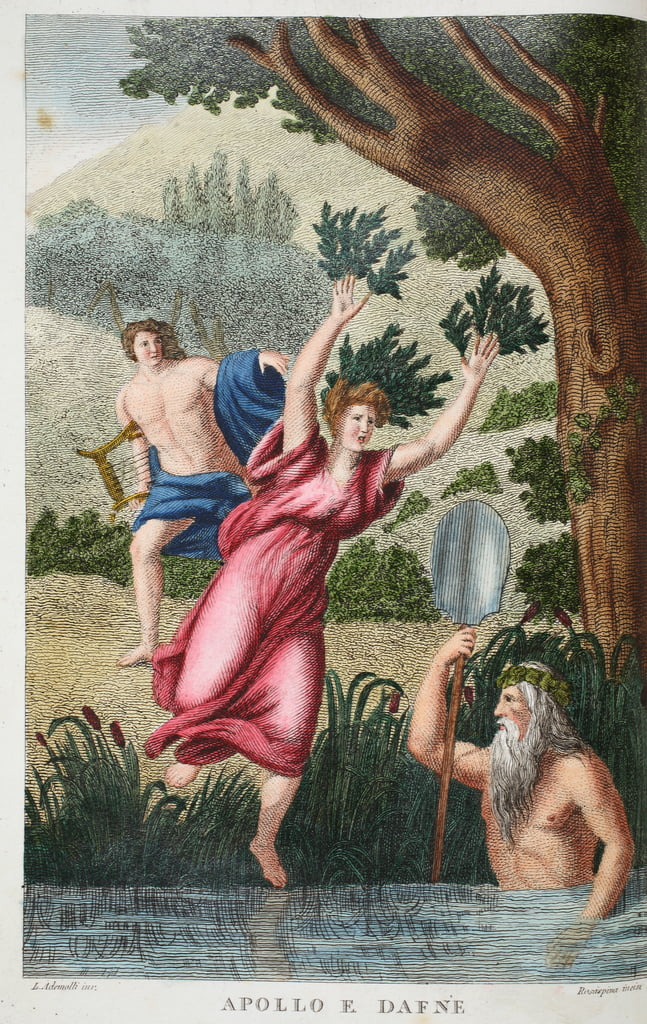 Phoebus and Daphne or Apollo e Dafne, illustration from Ovid's  Metamorphoses, Florence, 1832 (hand-coloured engraving)