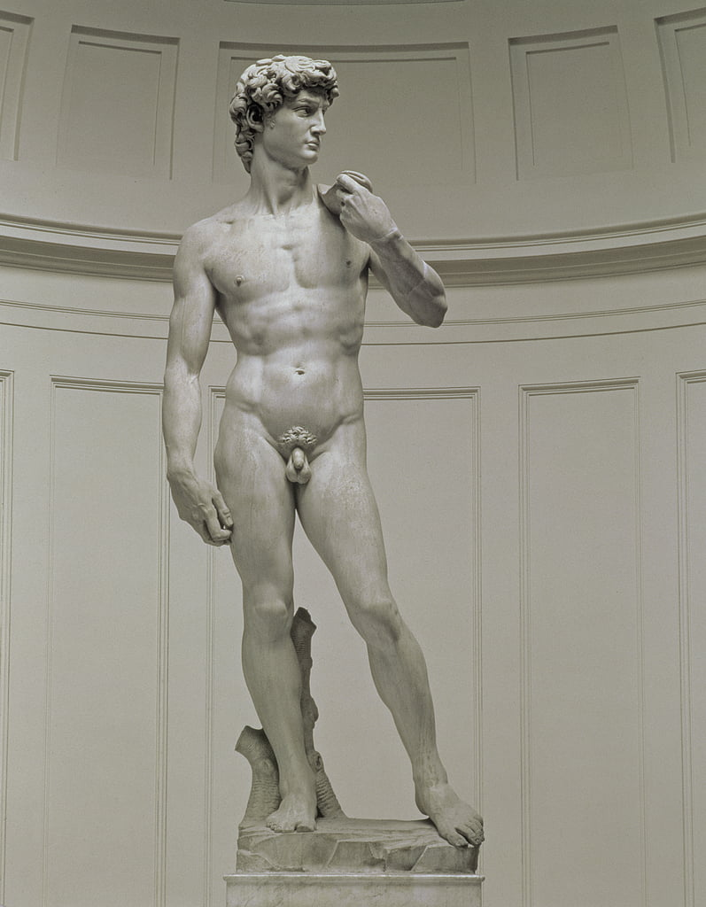 David, 1501-04 (marble) by Michelangelo Buonarroti