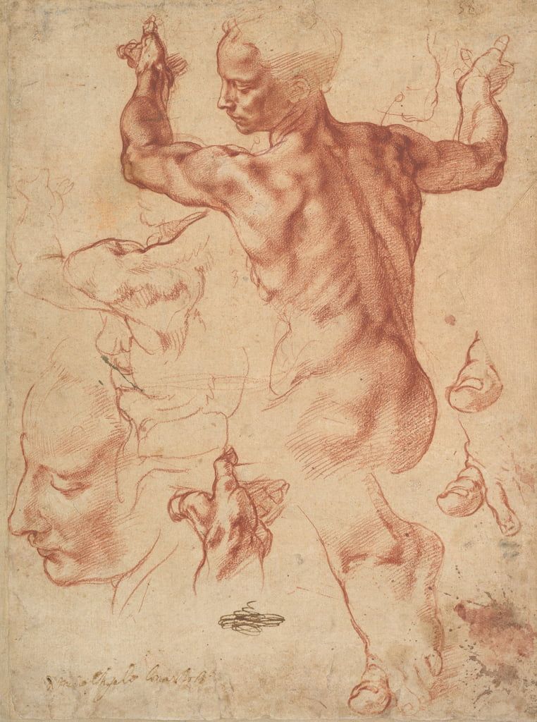 Studies for the Libyan Sibyl (recto), c.1510-11 (red chalk on paper) by Michelangelo Buonarroti