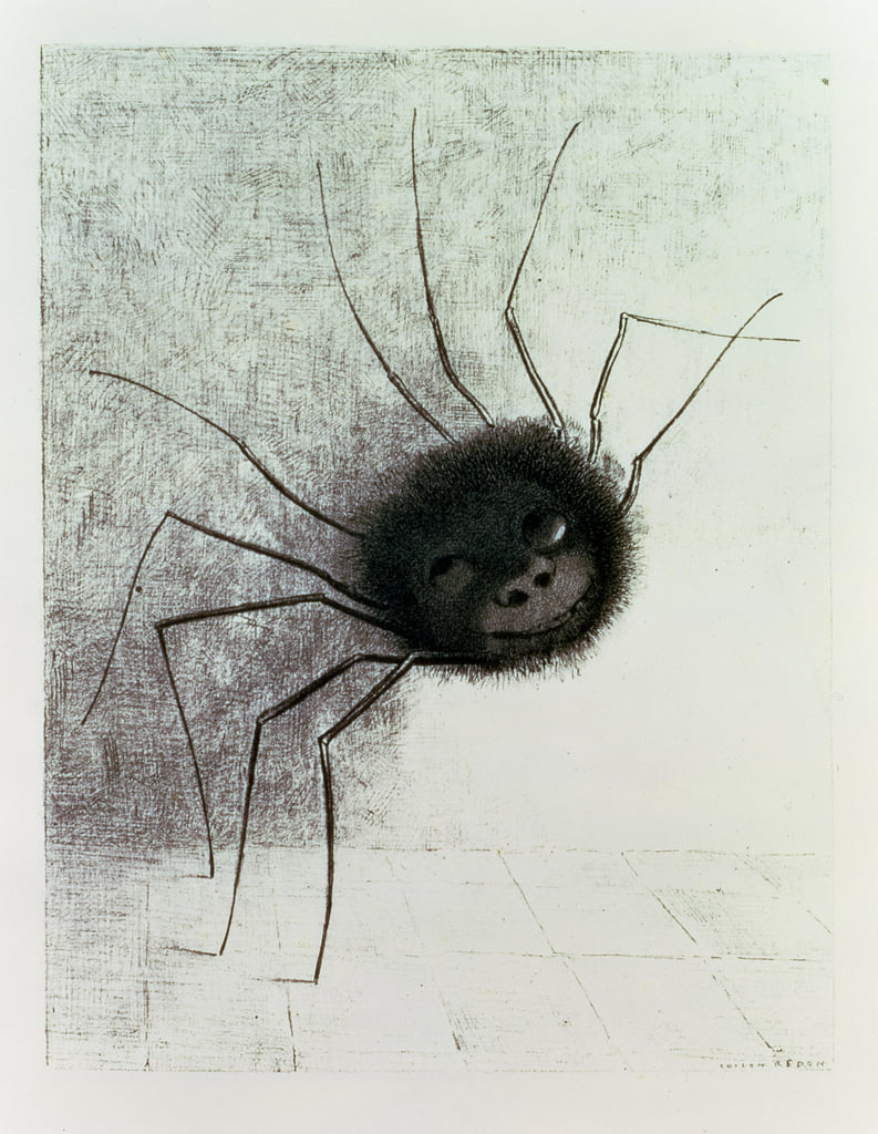 Smiling Spider, c.1881  by Odilon Redon