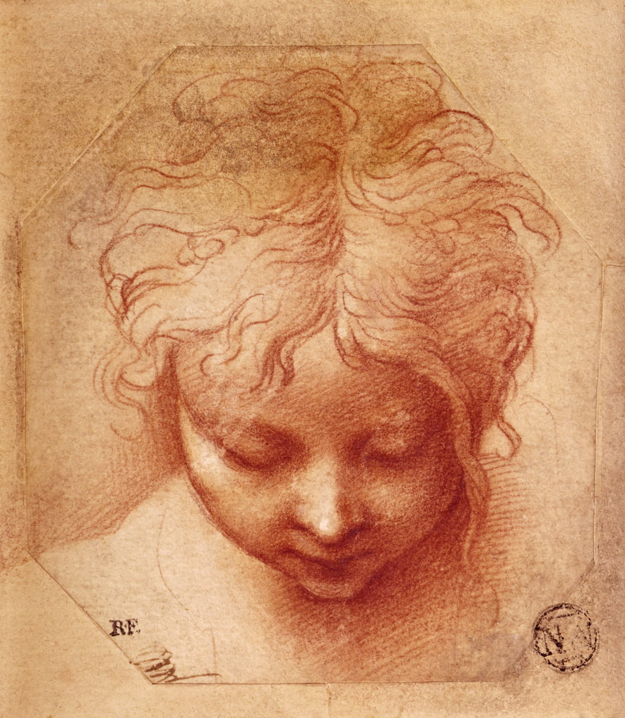 Study of a Head (red chalk on paper) by Parmigianino