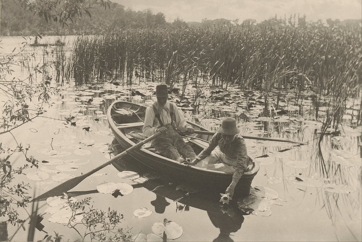 Gathering Water-Lilies by Peter Henry Emerson