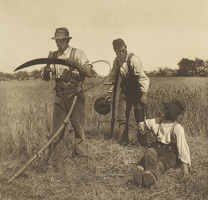 In the Barley-Harvest, Suffolk, 1888 (photogravure) by Peter Henry Emerson