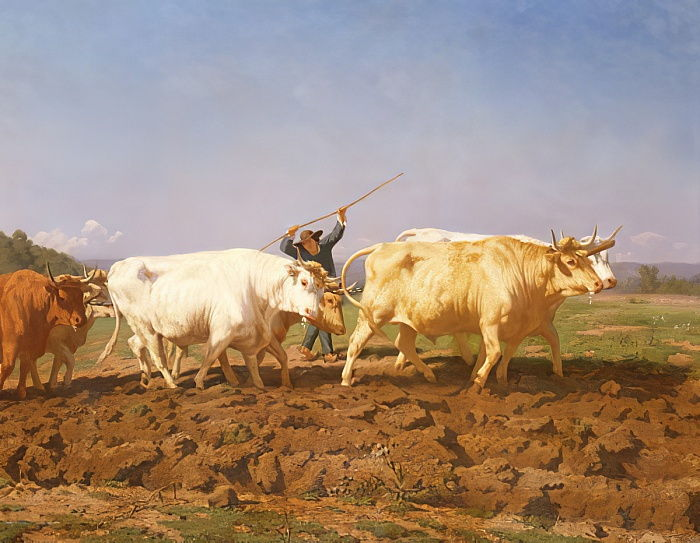 Ploughing in the Nivernais, 1850 detail of 60149 by Rosa Bonheur