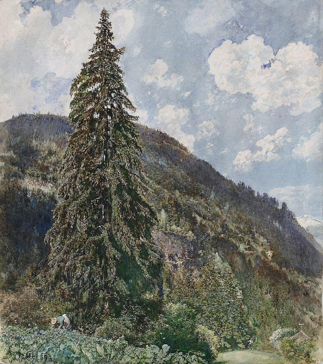 The old Spruce in Bad Gastein by Rudolf von Alt