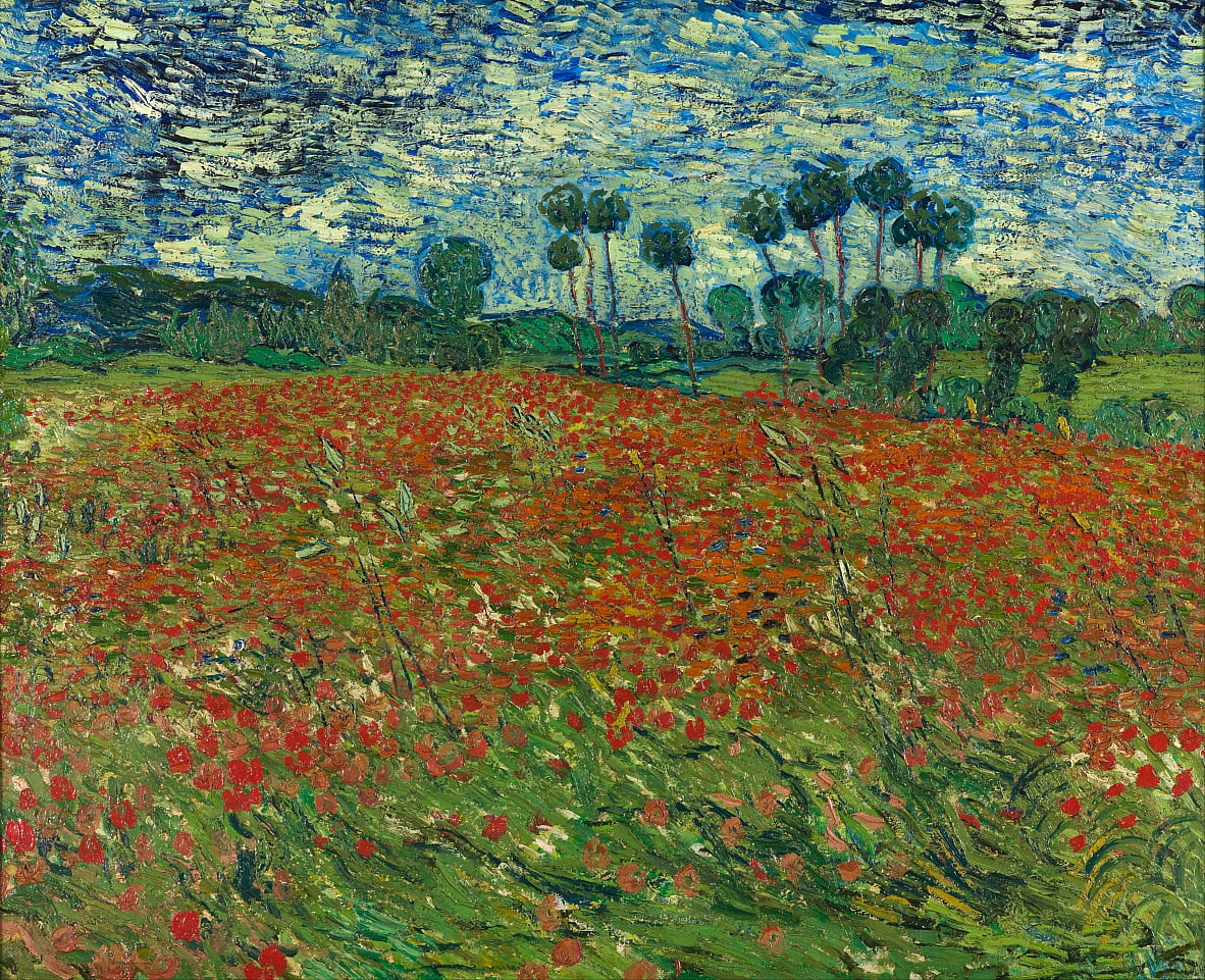 Poppy field by Vincent van Gogh