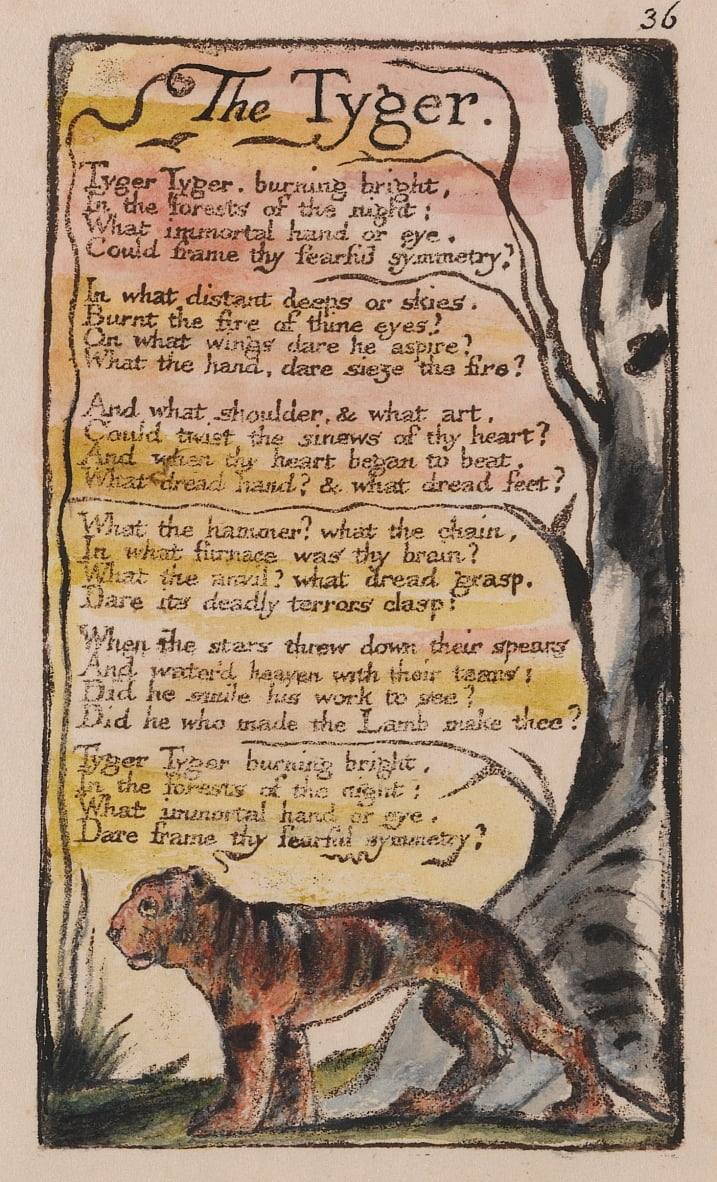 Songs of Innocence and of Experience, Plate 36, The Tyger (Bentley 42) by William Blake