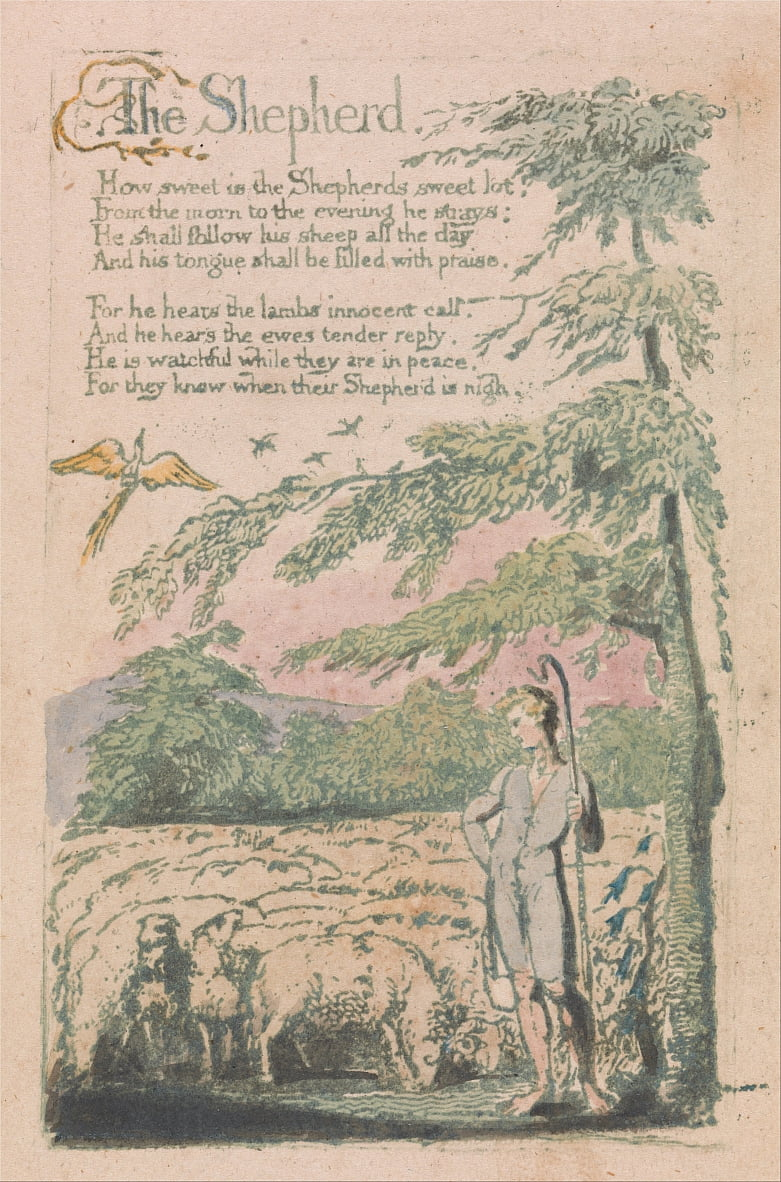 Songs of Innocence and of Experience, Plate 4, The Shepherd (Bentley 5) by William Blake