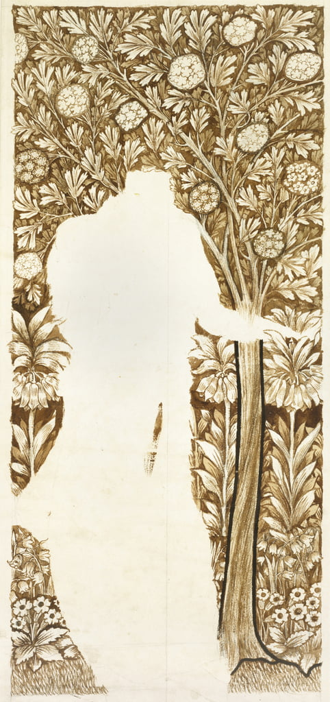 Design for a foliage background (unfinished) (graphite with brown washes) by William Morris